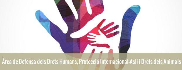 Àrea de Defensa dels Drets Humans, Protecció Internacional-Asil i Drets dels Animals